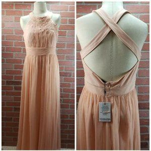 Little Mistress NWT Pale Pink Formal Maxi Dress